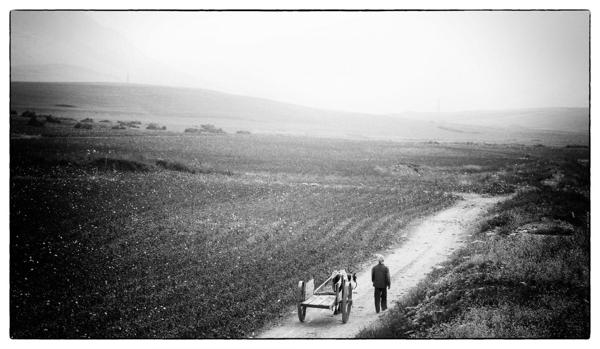 Fotokurs: «Fra analogt til digitalt – prosess og teknikker for skanning av bilder»