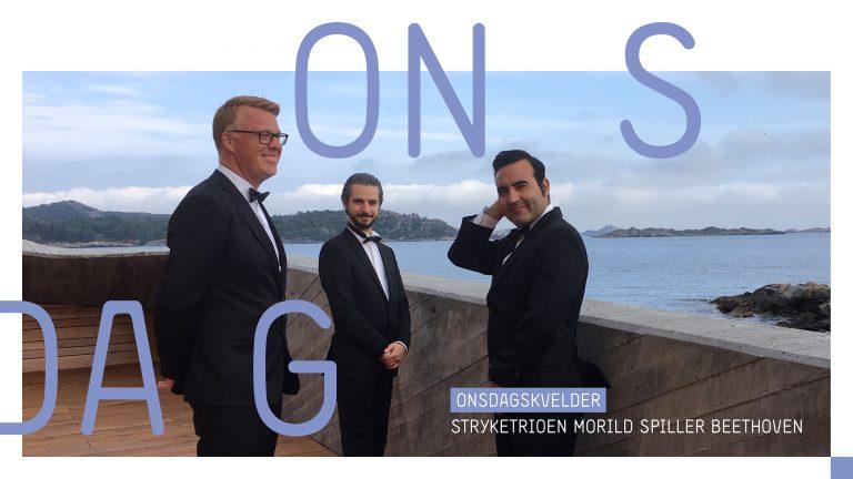Konsert: Stryketrioen Morild spiller Beethoven